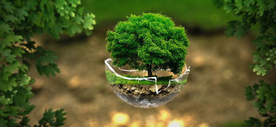 Entel asume compromiso frente al cambio climático