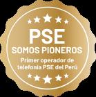 PSE - Somos Pioneros